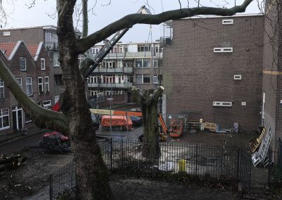 Robert Kroos – Requiem for a crushed tree
